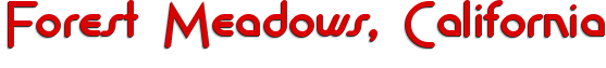 Forest Meadows business directory logo